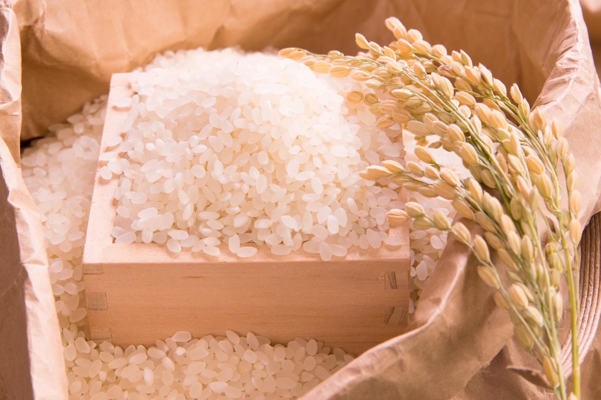 お米入りの枡